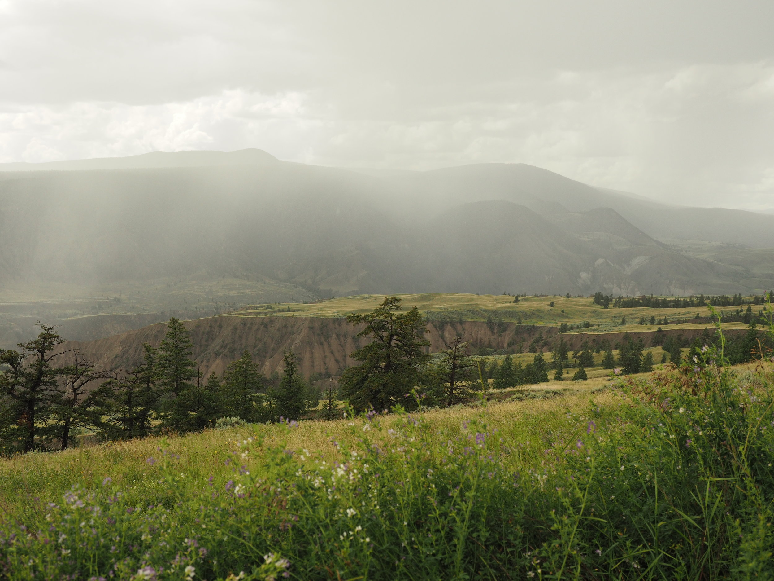 View of the Fraser Canyon