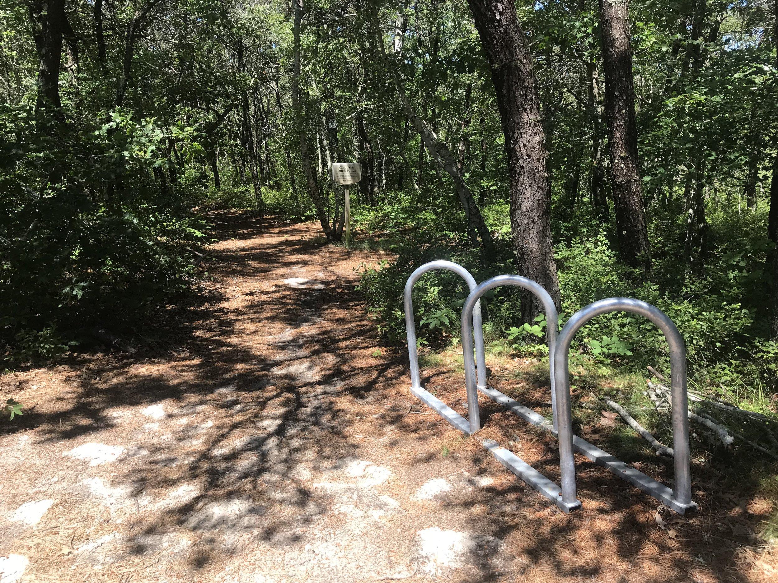 After - One 6-bike Saris corral rack