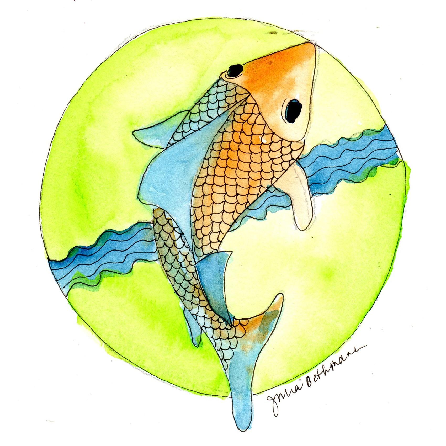 Fish swimming upstream.jpg