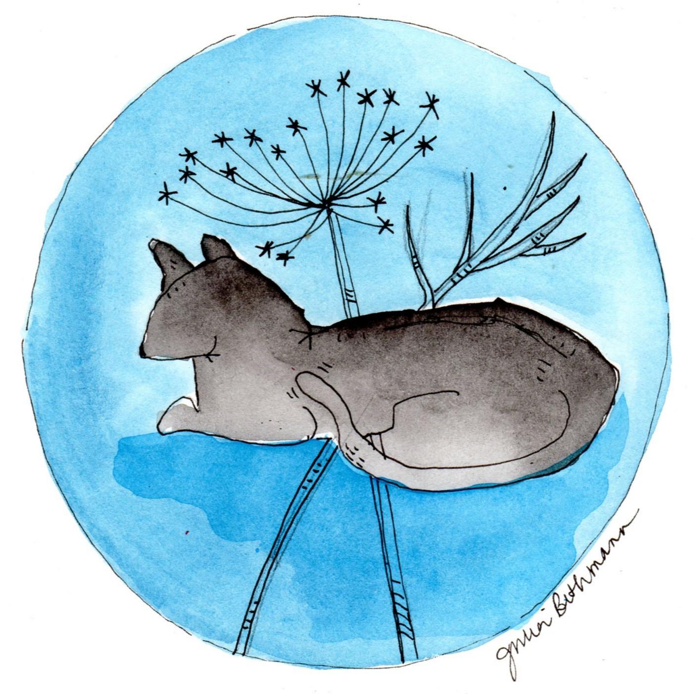 alert cat w blue.jpg