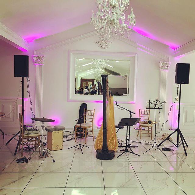 Sunday playday @oandeband @lvertalent #engagementparty #bandforhire #jazz #pop #frenchmusic #singingharpist harpist #harp #percussion #duo