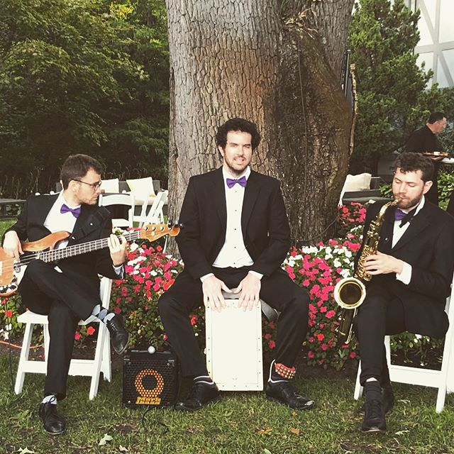 Three men and a harp. #oandeband #lvertalent @lvertalent @oandeband #tarrytown #ny #jazz #event #music #jazzband #frenchjazz #singingharpist #acoustic #gigmasters #thebash