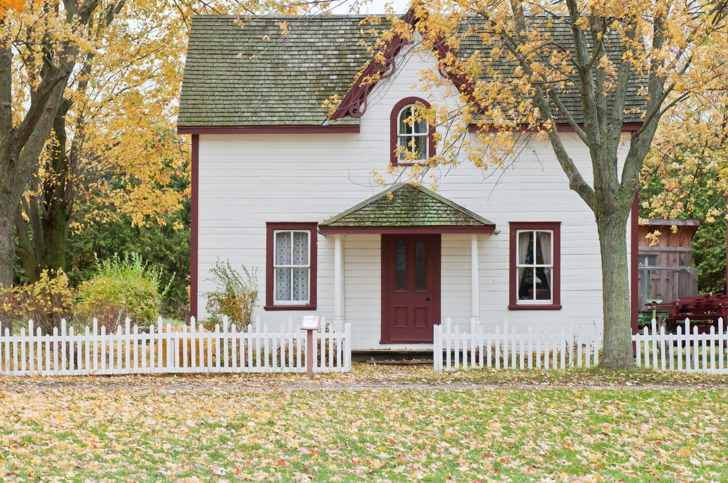 Improving your credit score can put you on the path to home ownership.