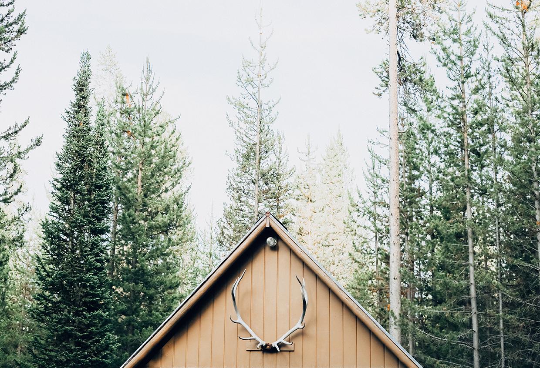 cabin_resized.jpg