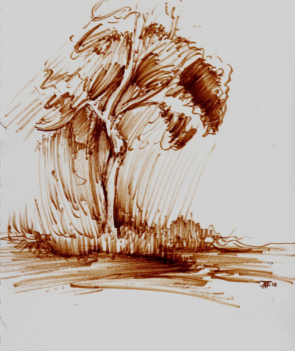 Ansell_Tom_Lone Tree_final version.jpg