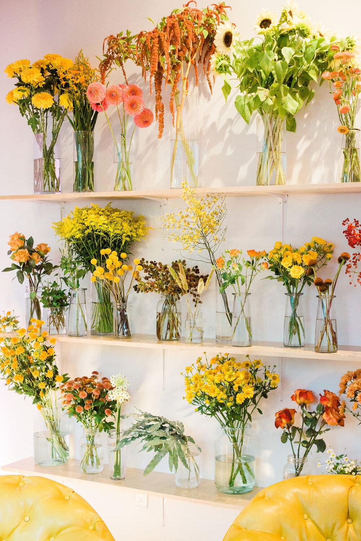 Florista-1-7434.jpg