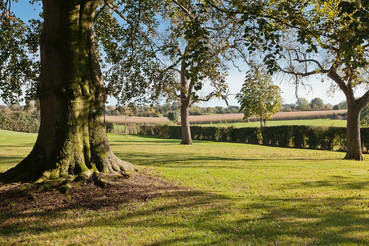 Garden - A magnificent ¾ of an acre park