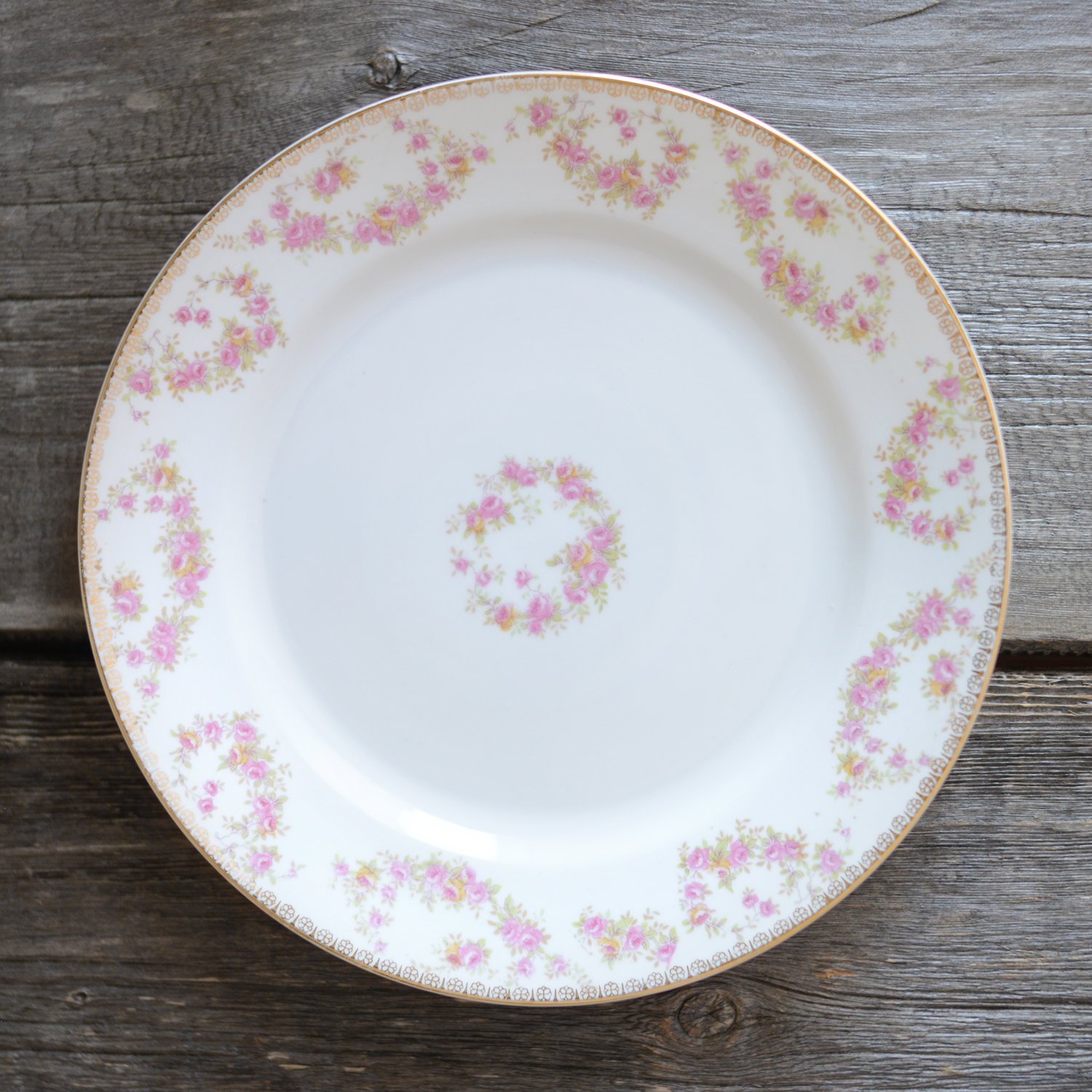 loveridge dinner plate