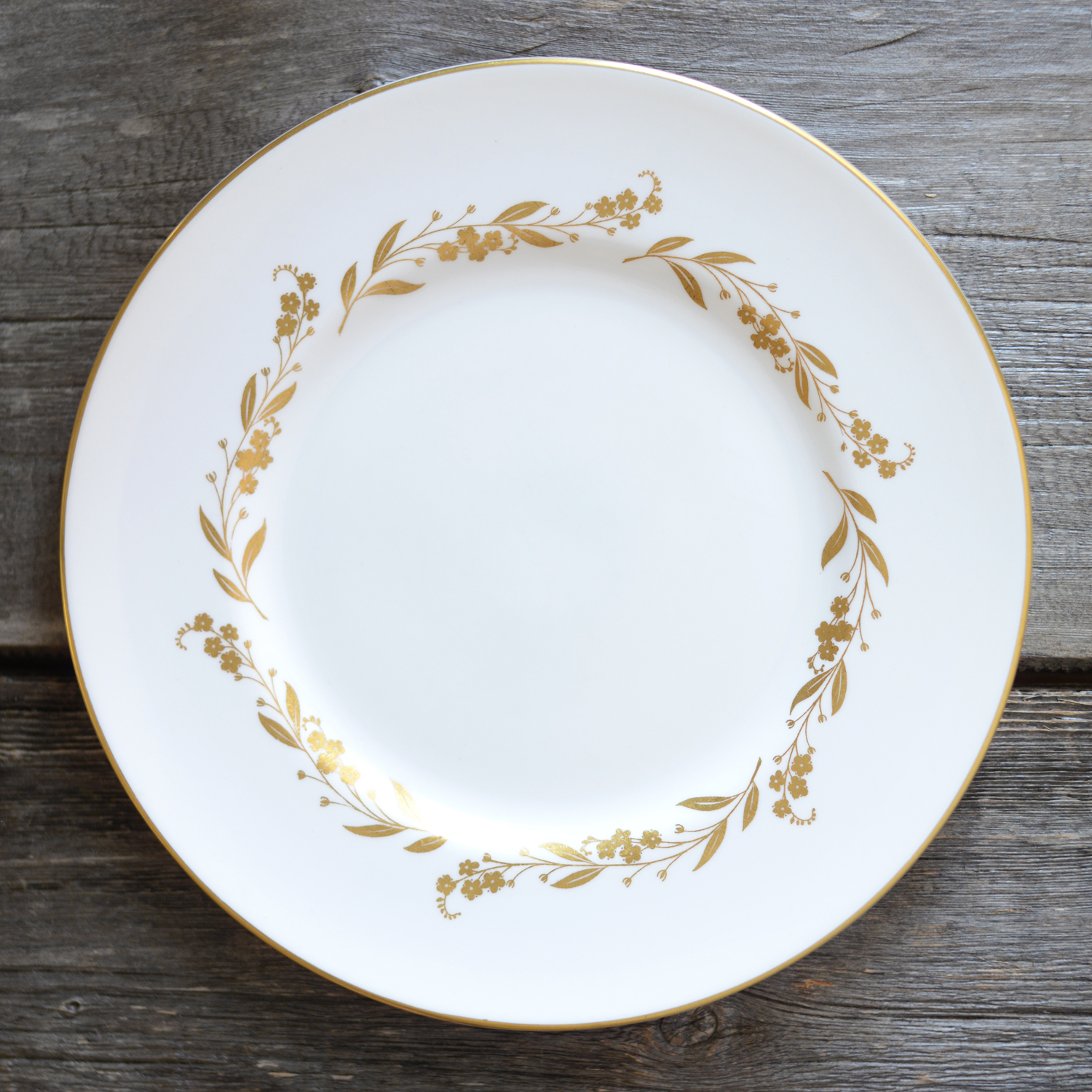 luscombe dinner plate - 6 available