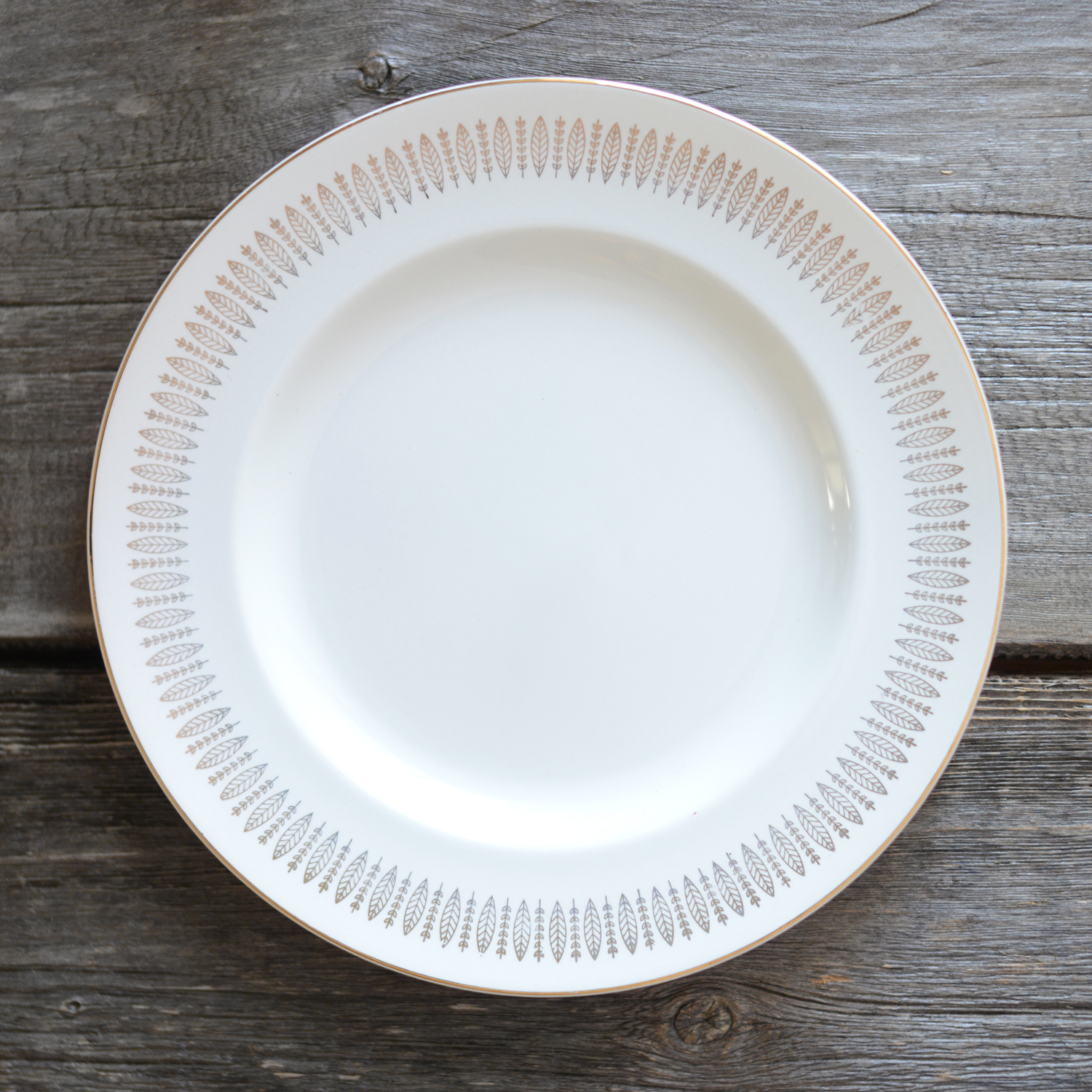 walling dinner plate - 6 available
