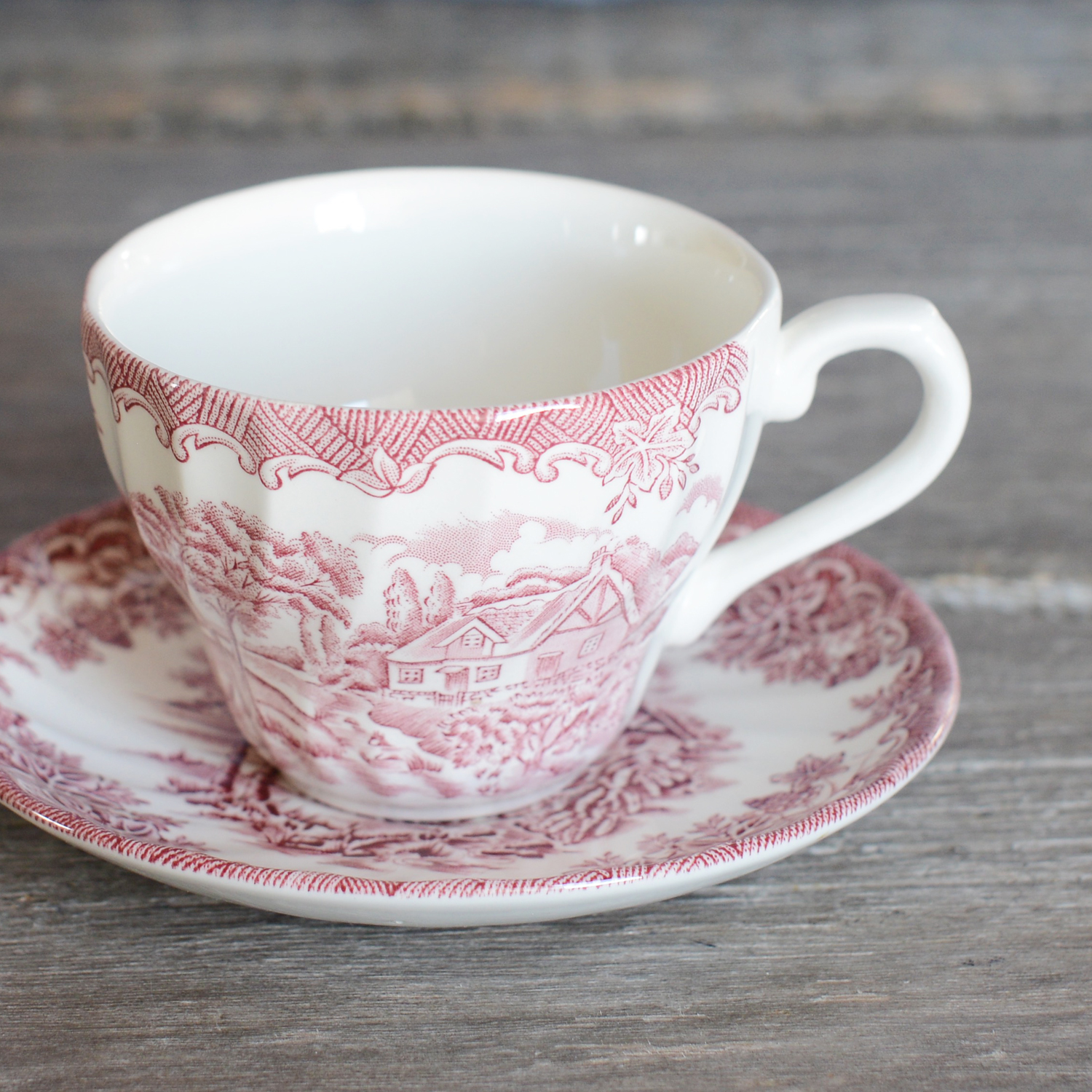 bloomfield tea cup and saucer