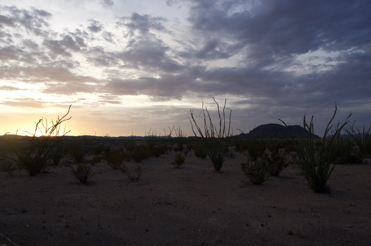 Dawn outside Terlingua, TX