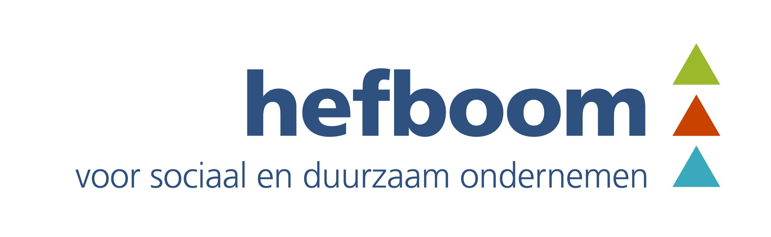 hefboom_logo_blauw-02.jpg