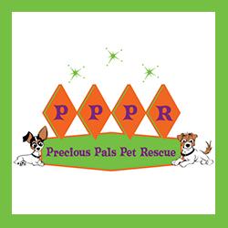 Precious Pals Pet Rescue Los Angeles, CA  preciouspalspetrescue.org   @preciouspalspetrescue