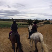 All these rides are led by a member local to the area, are suitable for all level of rider and a great opportunity for members to experience hacking and scenery they wouldn't normally see. We welcome any ideas for new rides and routes, please contact oxridingclub@gmail.com if you have any suggestions. -