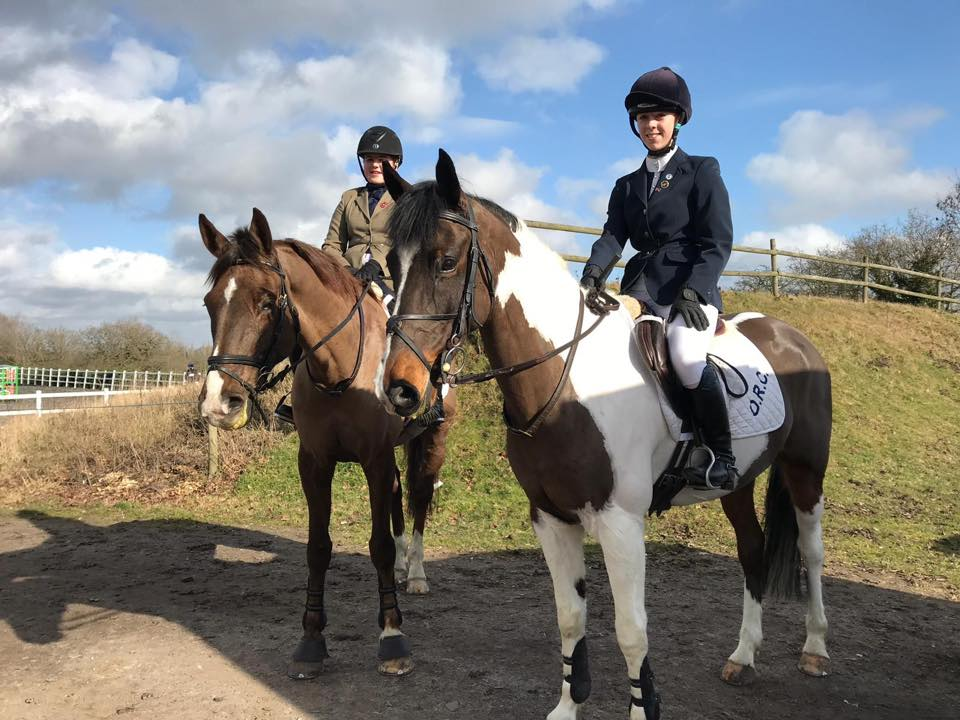 AREA 5 SHOW JUMPING QUALIFIER  - SOLIHULL EQUESTRIAN CENTRE 16TH FEBRUARY 2019