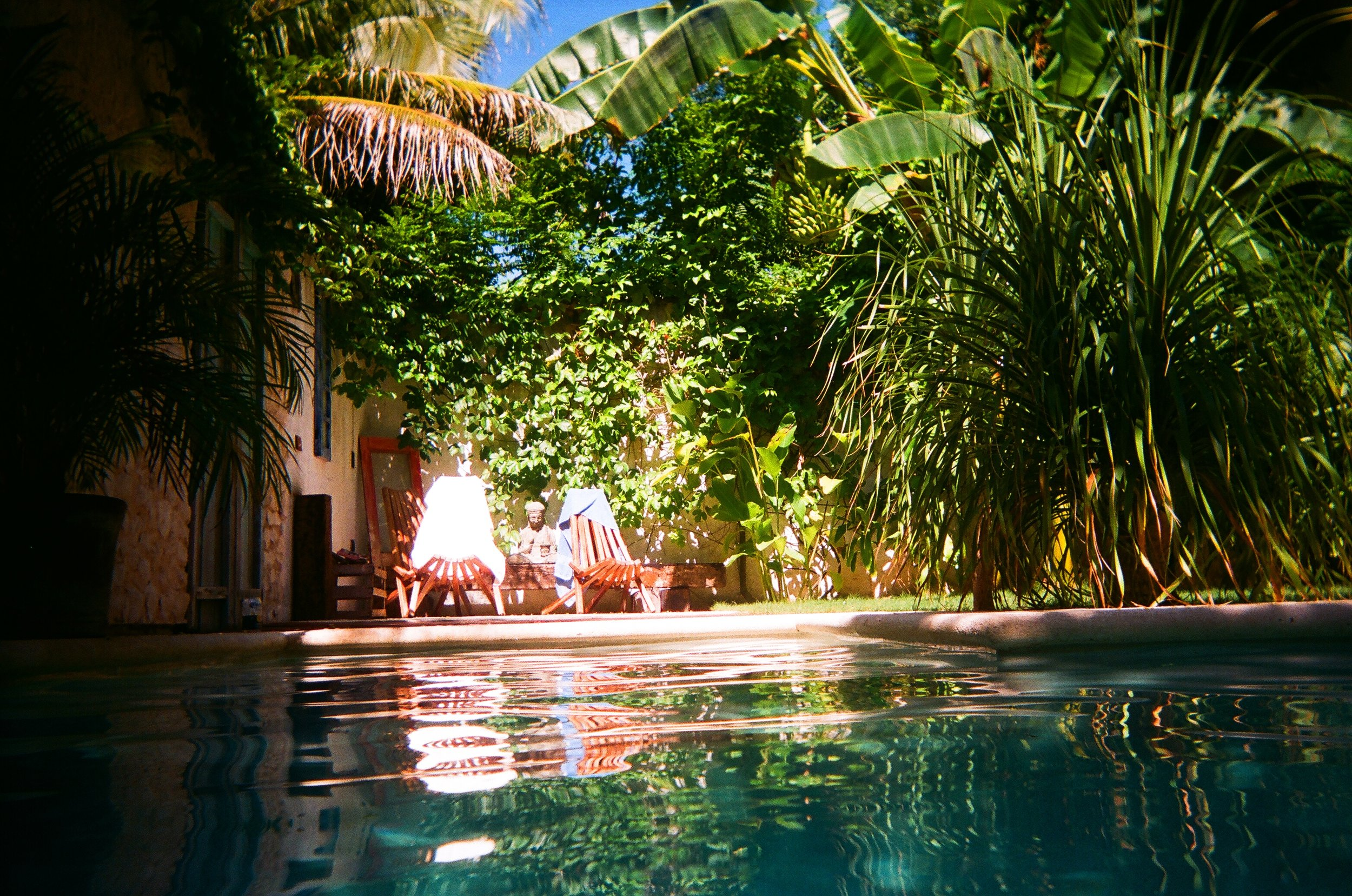 View From The Pool.JPG