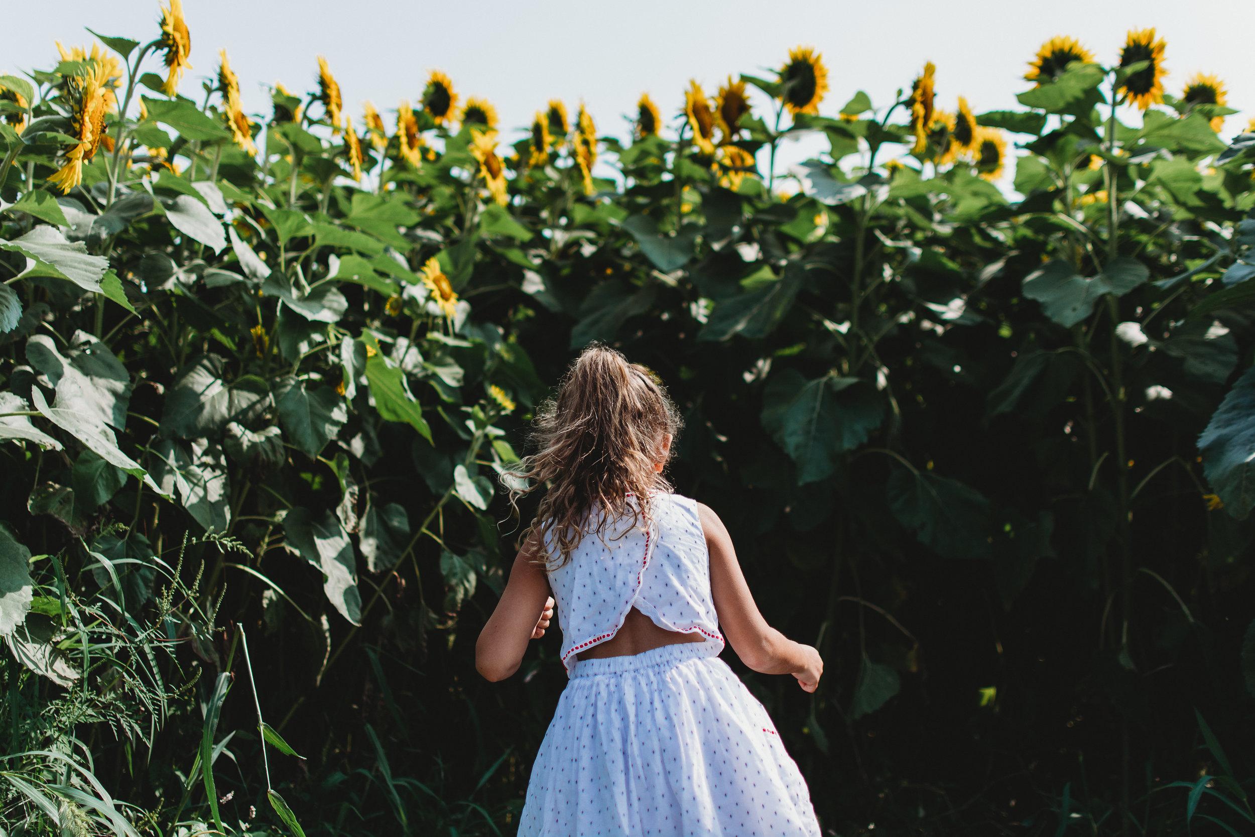 Colby Farm Sunflowers (12 of 58).jpg