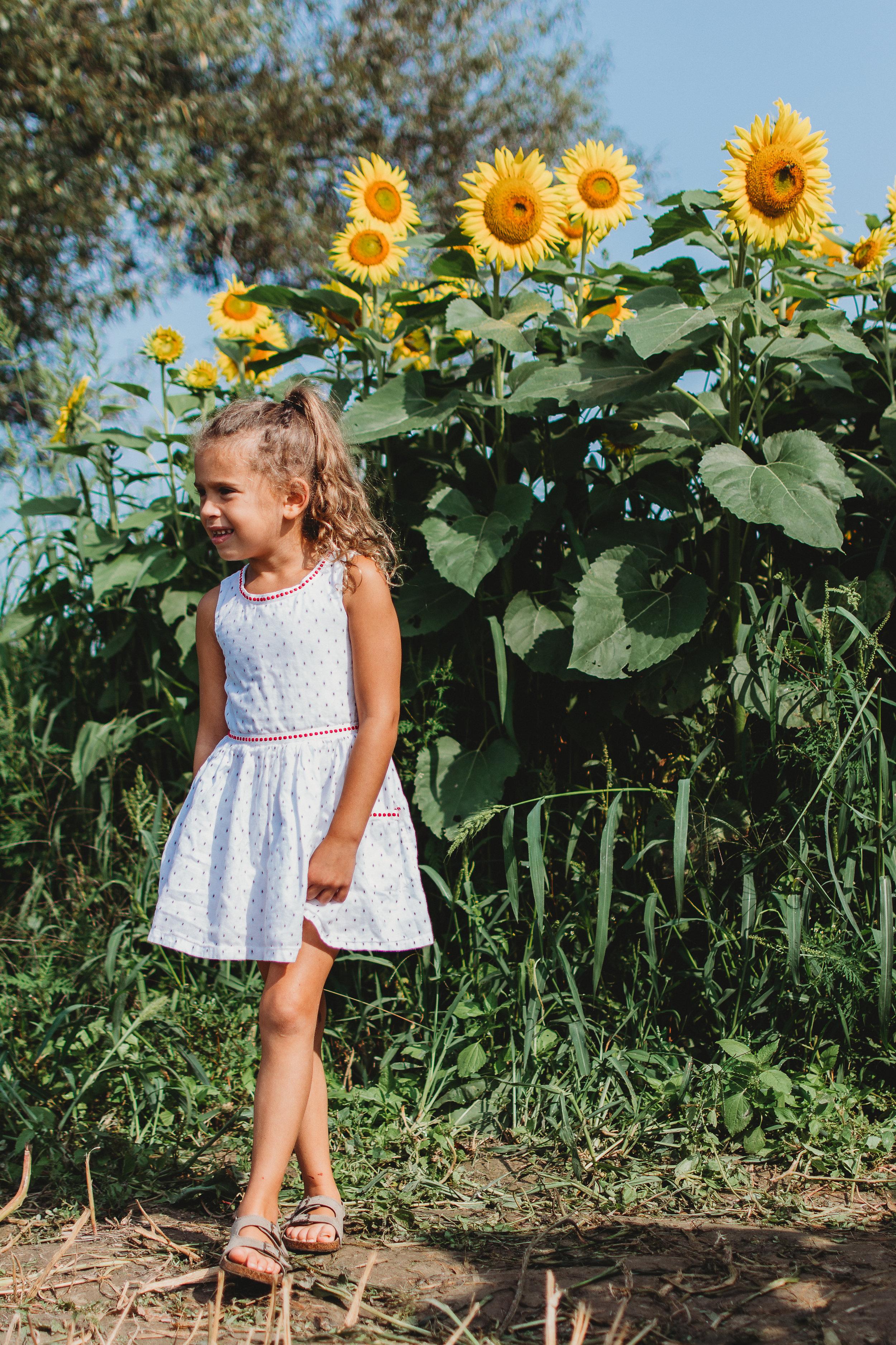 Colby Farm Sunflowers (14 of 58).jpg