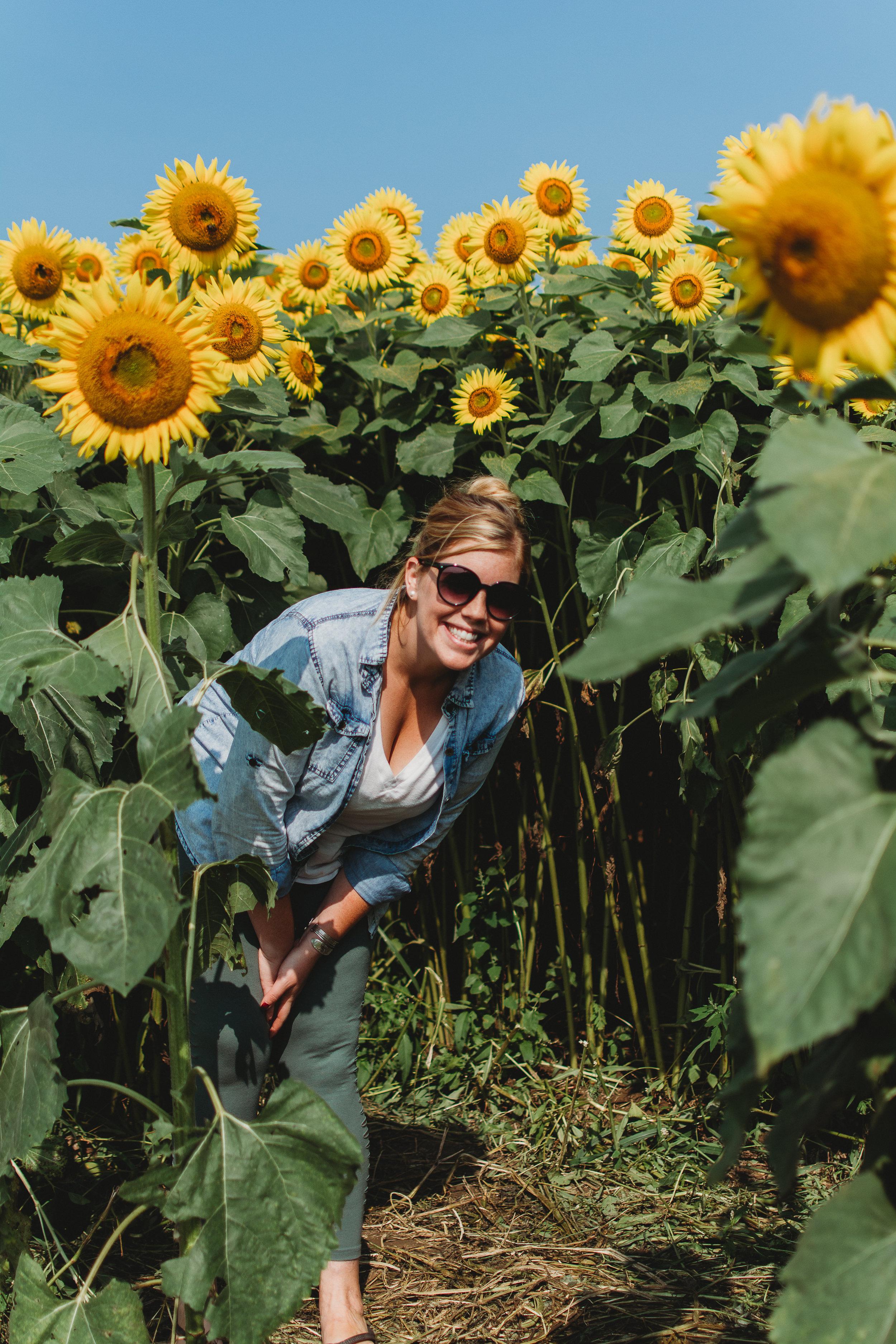 Colby Farm Sunflowers (38 of 58).jpg