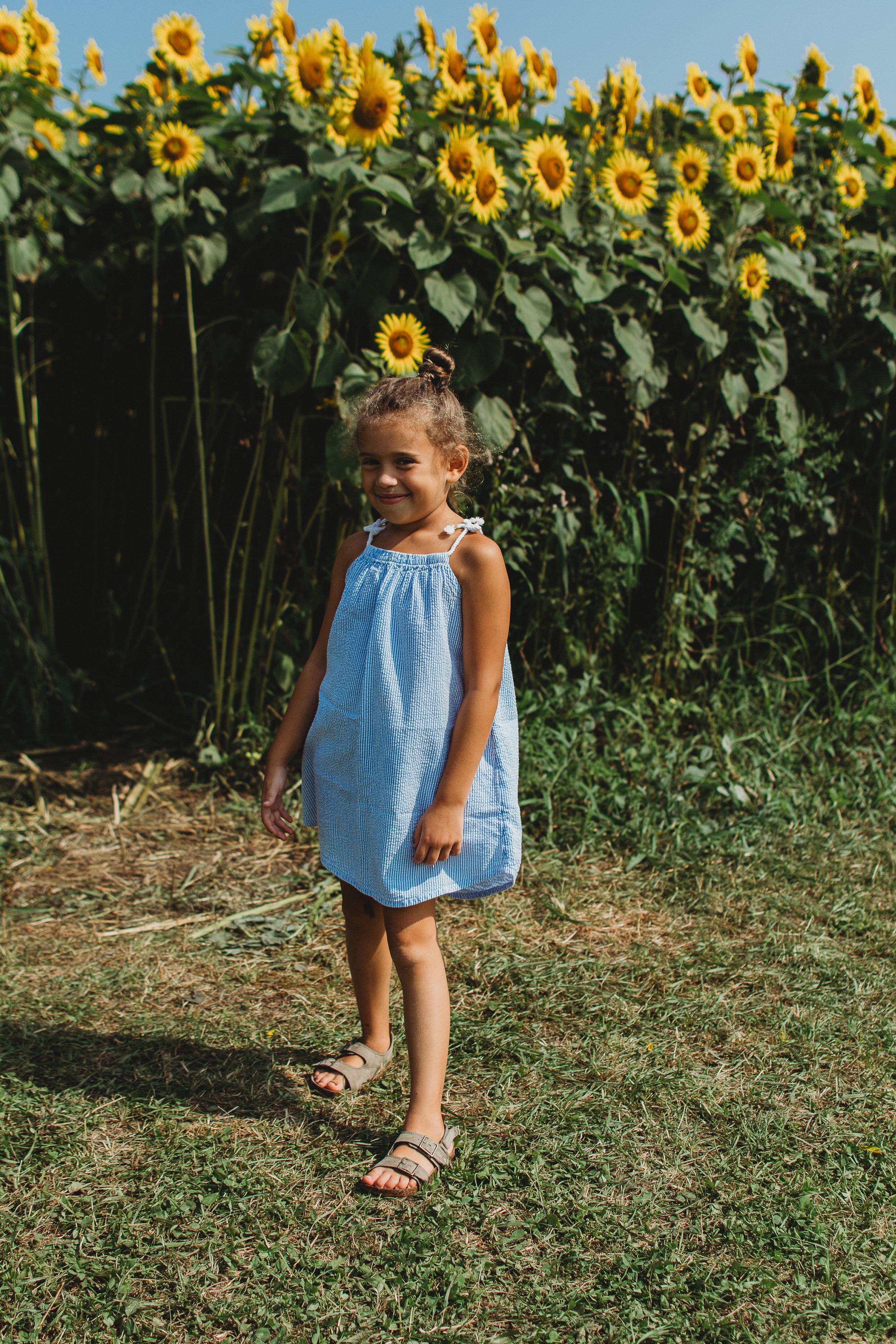 Colby Farm Sunflowers (41 of 58).jpg