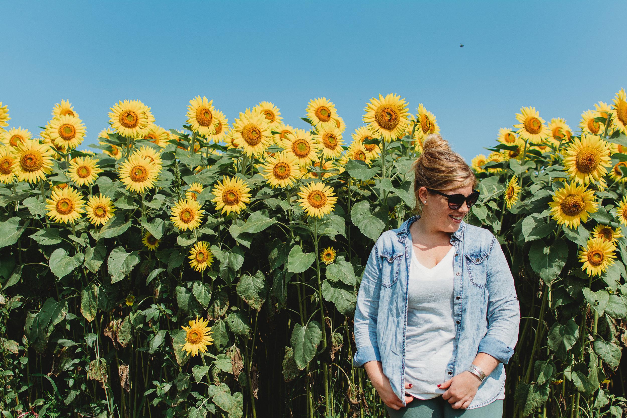 Colby Farm Sunflowers (51 of 58).jpg
