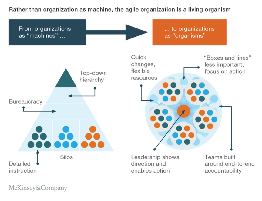 Source:    https://www.mckinsey.com/business-functions/organization/our-insights/the-five-trademarks-of-agile-organizations