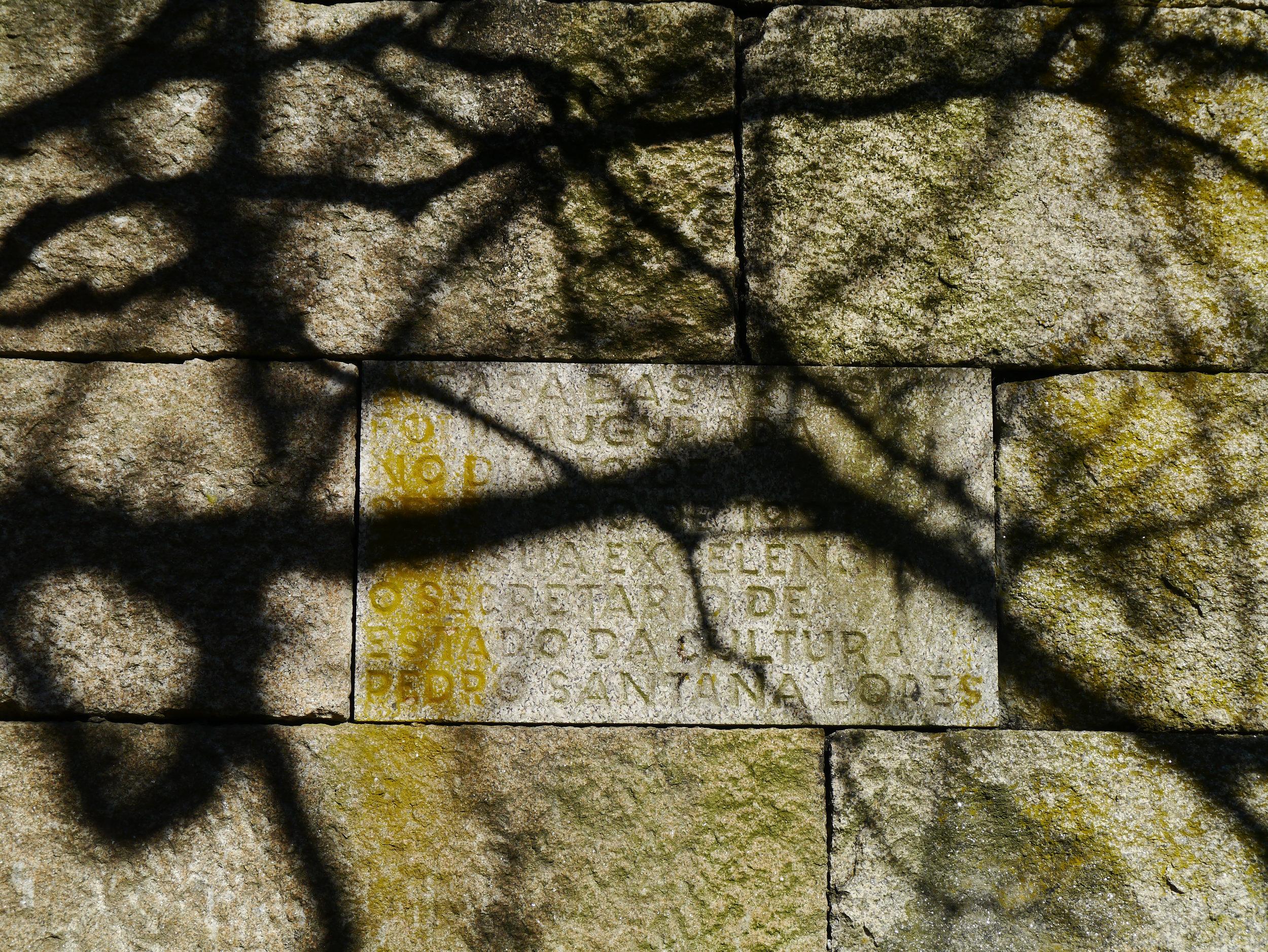 Shadows through trees on stone block wall. Casa Das Artes by architect Souto Moura - Porto