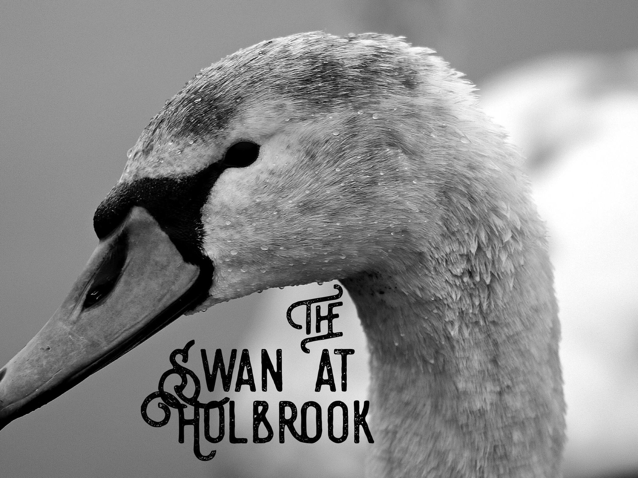 swan hol.jpg