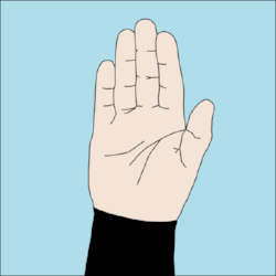 600px-Dive_hand_signal_Stop.png