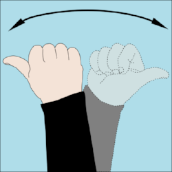 Dive_hand_signal_Which_Way.png