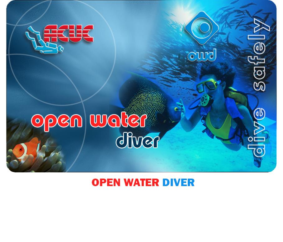 I2-open-water-diver.jpg