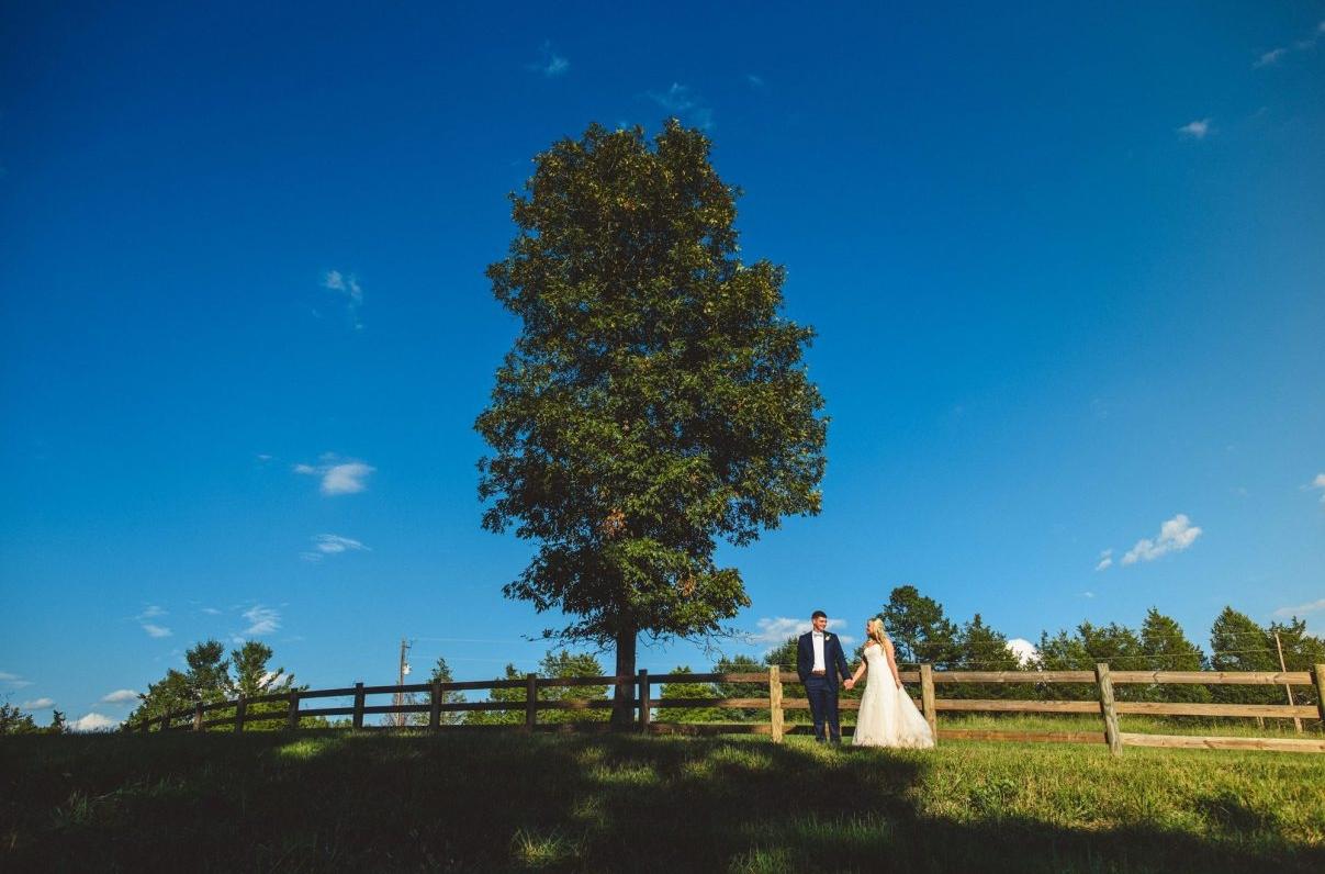Farm Wedding Venue Tree