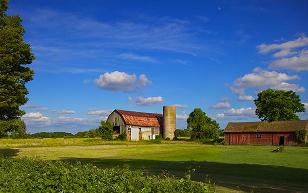 idyllic farm-w.jpg