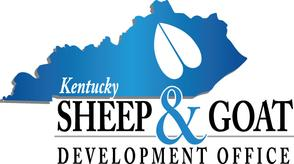 ky sheep and goat.jpg