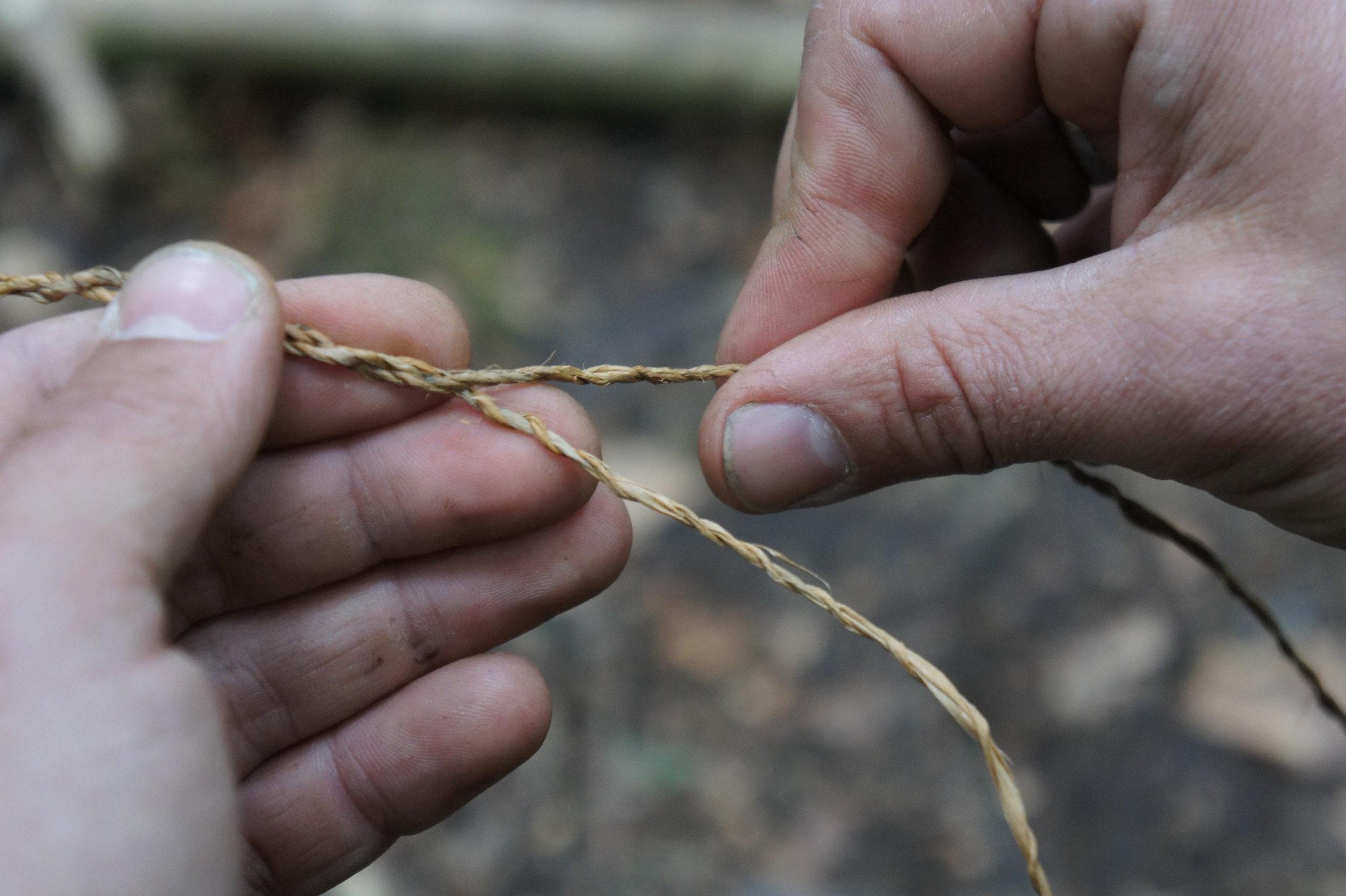 Bushcrafting: Herstellung von Schnur