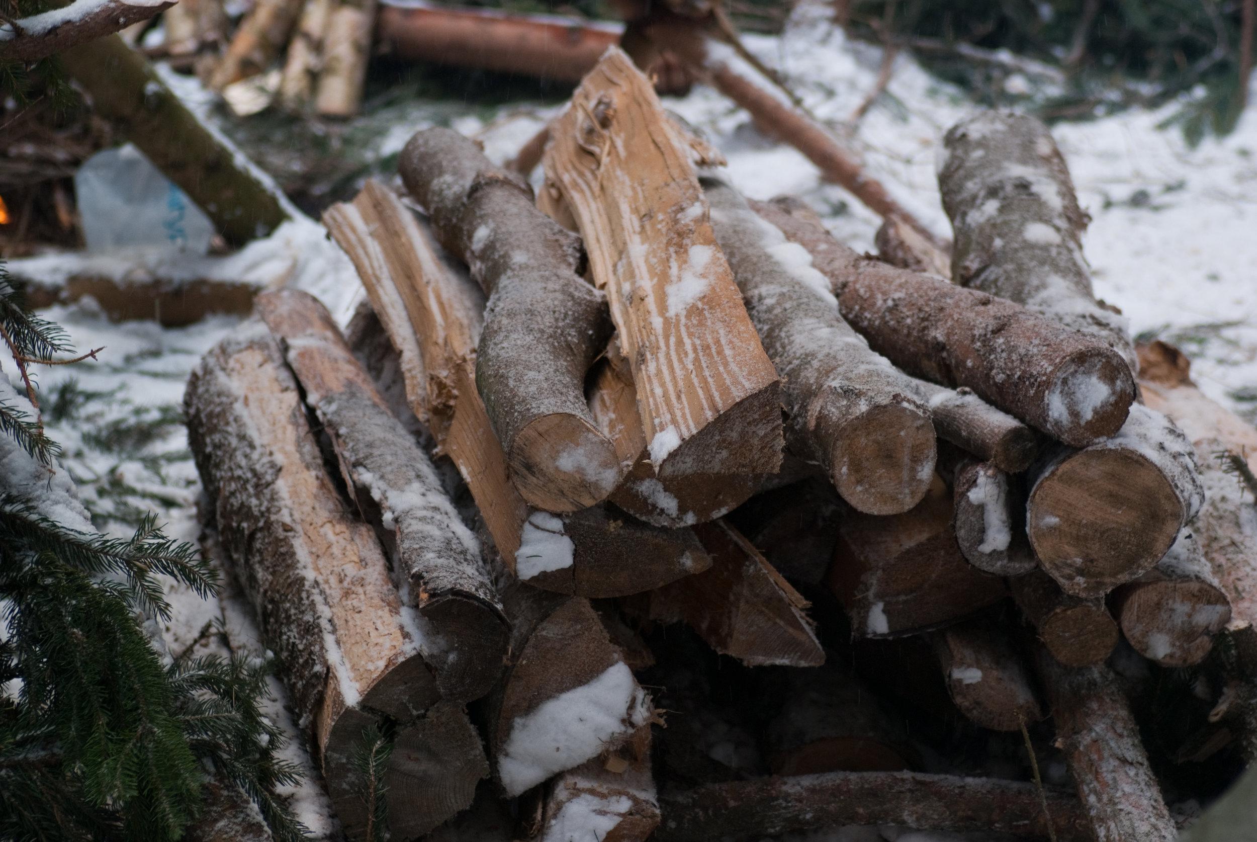 Feuerholz zum Überleben