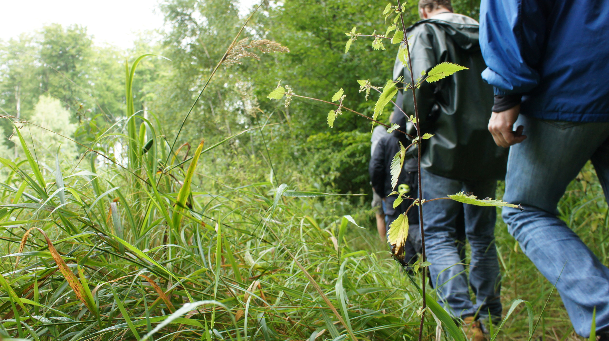Outdoor GUide / Wildnisführer Ausbildung - Abschluss und Zertifizierung