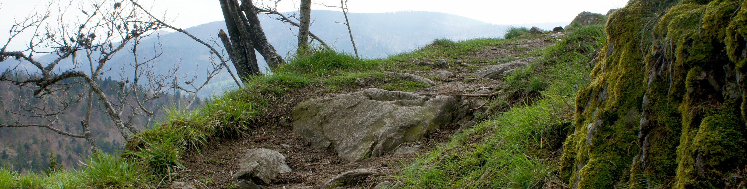 ABschluss der Wildnisführer Ausbildung als Zertifizierter Outdoor Guide