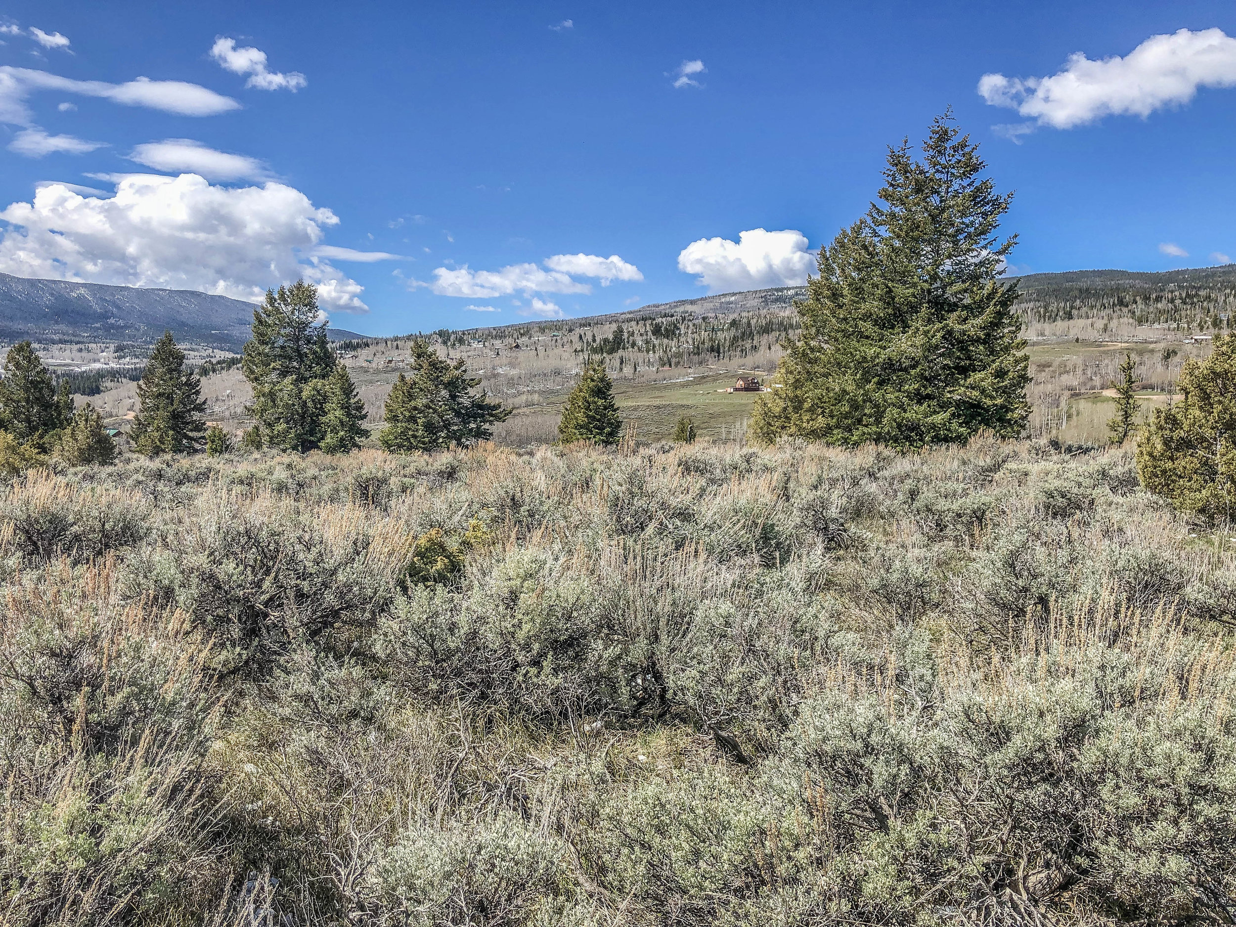 394 County Road 19 - KREMMLING - Lovely mountain acreage with lots of sunshine, great views and just minutes away from public lands. This property features a nice meadow which is flat and would make for an easy build. Listed for $45,000