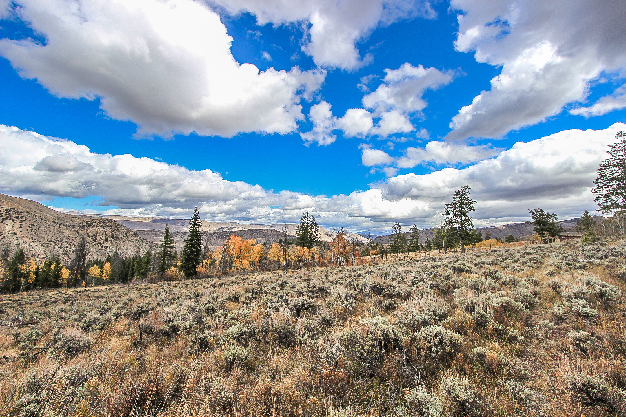 TBD County Road 559 - HOT SULPHUR SPRINGS - 123 acres of pristine Colorado high country. Lots of trees, amazing wildlife habitat, and gorgeous views from all directions. Property borders National Forest for endless recreational possibilities. Listed for $499,000