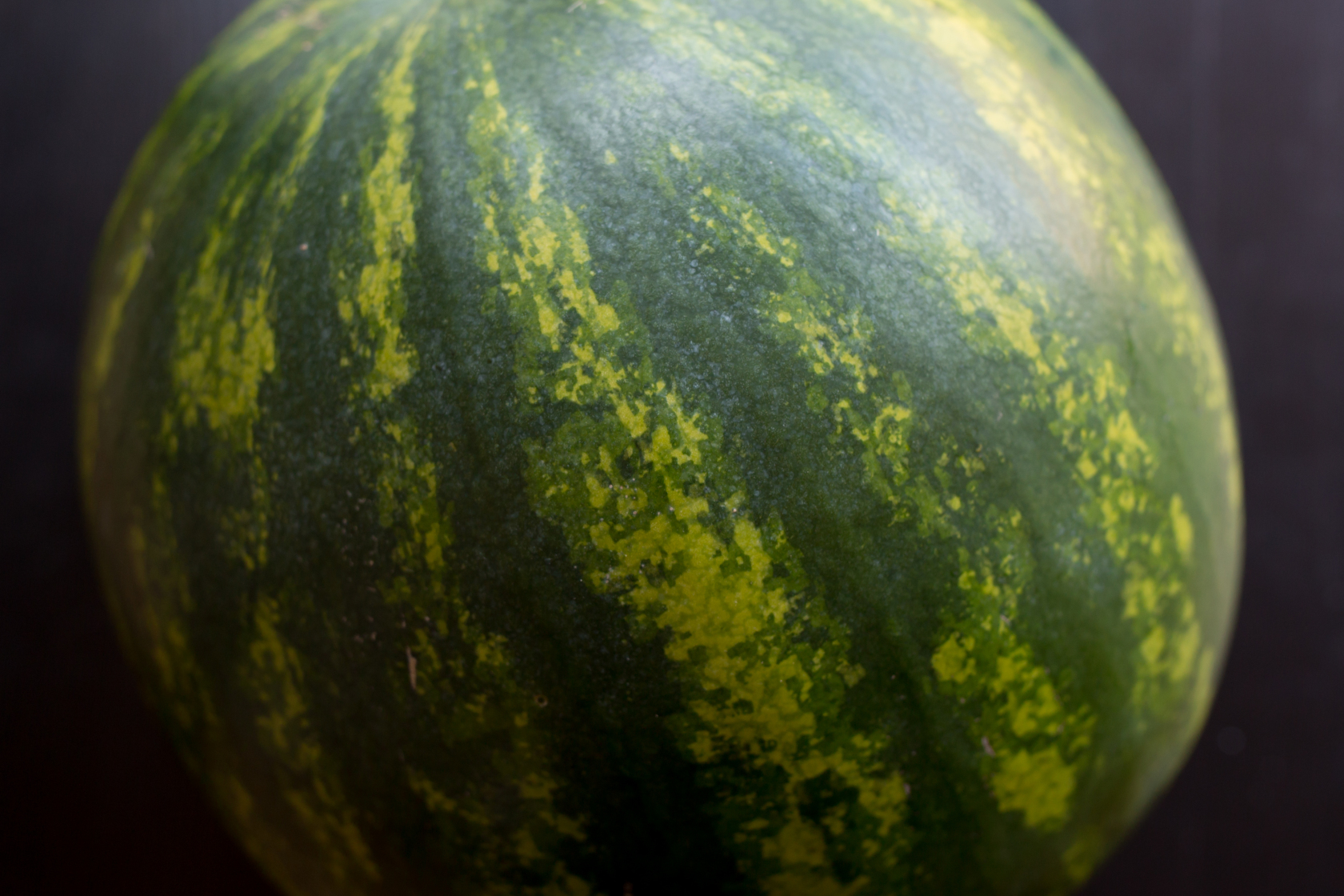 Watermelon is 30% rind, 70% flesh, 92% water and 100% edible