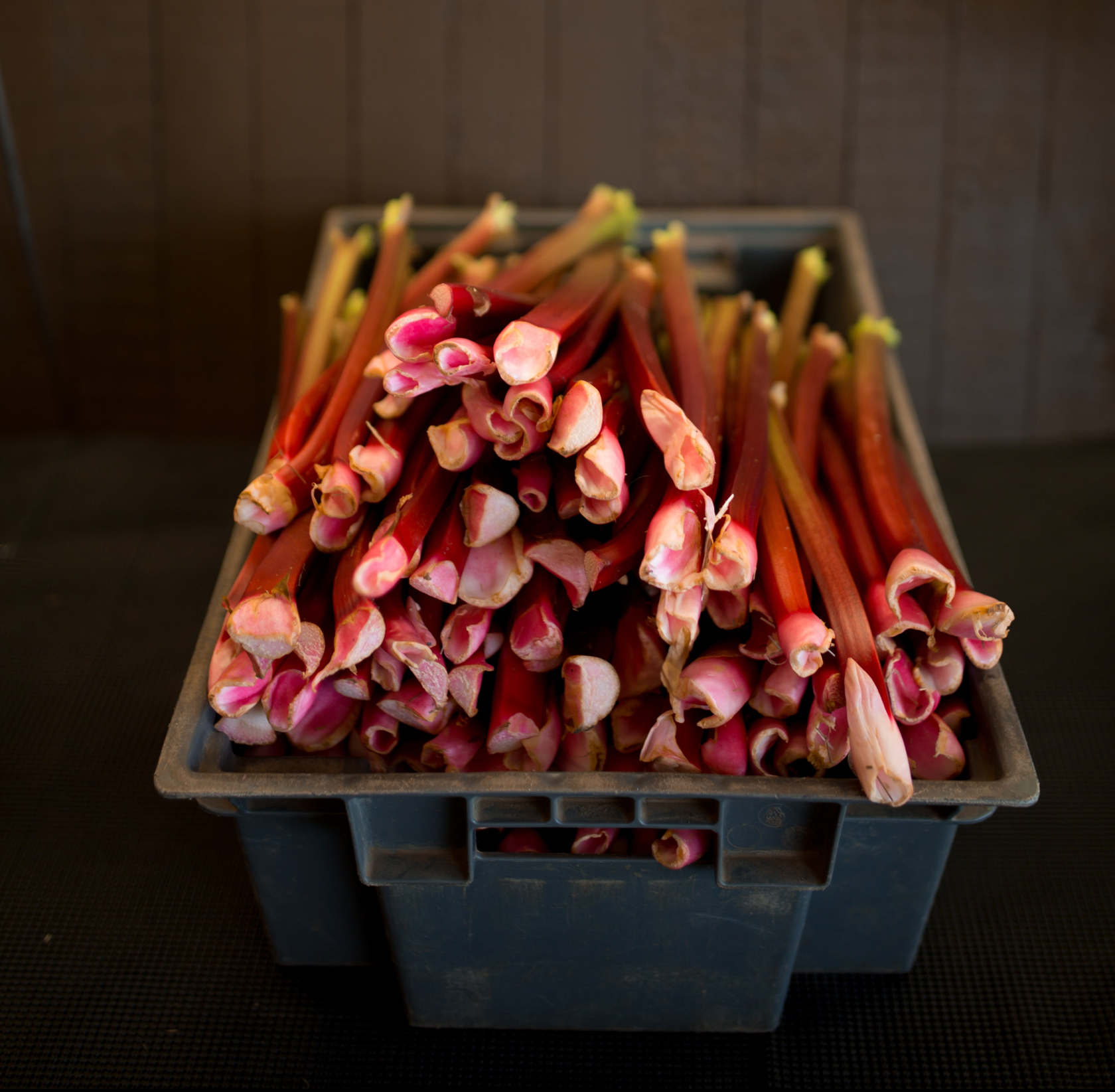 Fresh stalks are firm, shiny and snapable.
