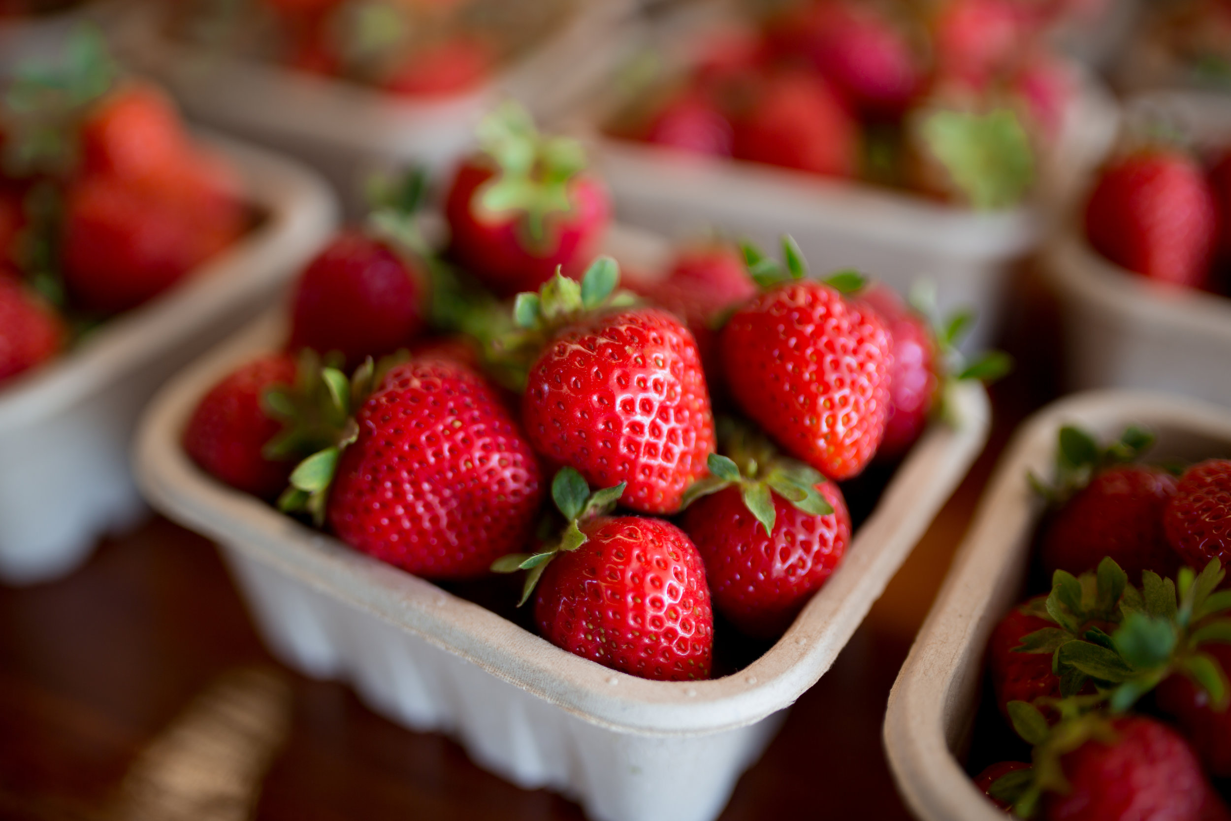 Buying and Storing - Look for bright red berries with green stems that look alive. Berries should be stored cool and dry and for no more than a couple of days