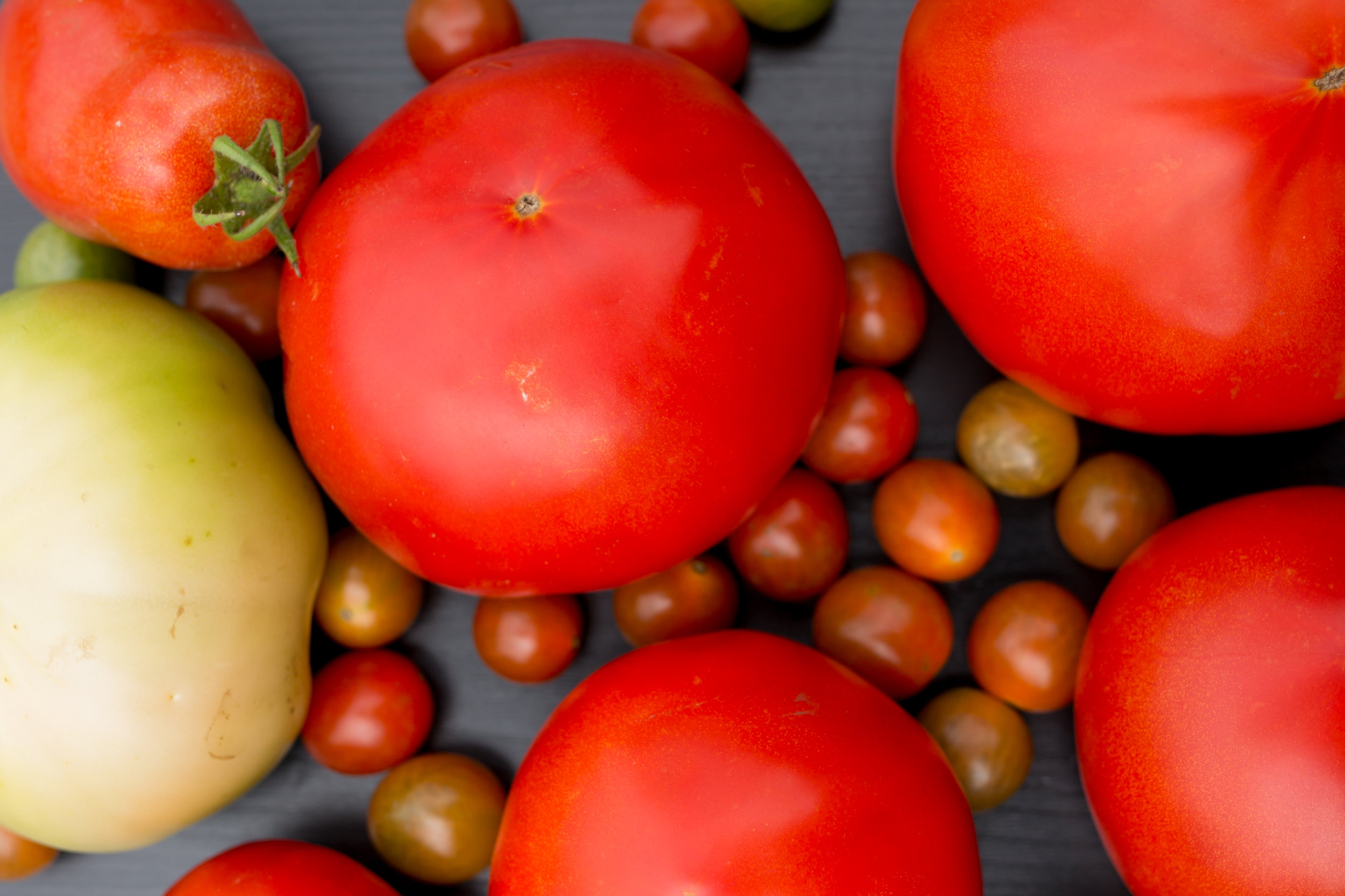 Never refrigerate fresh tomatoes - Store at room temperature, out of direct sunlight.