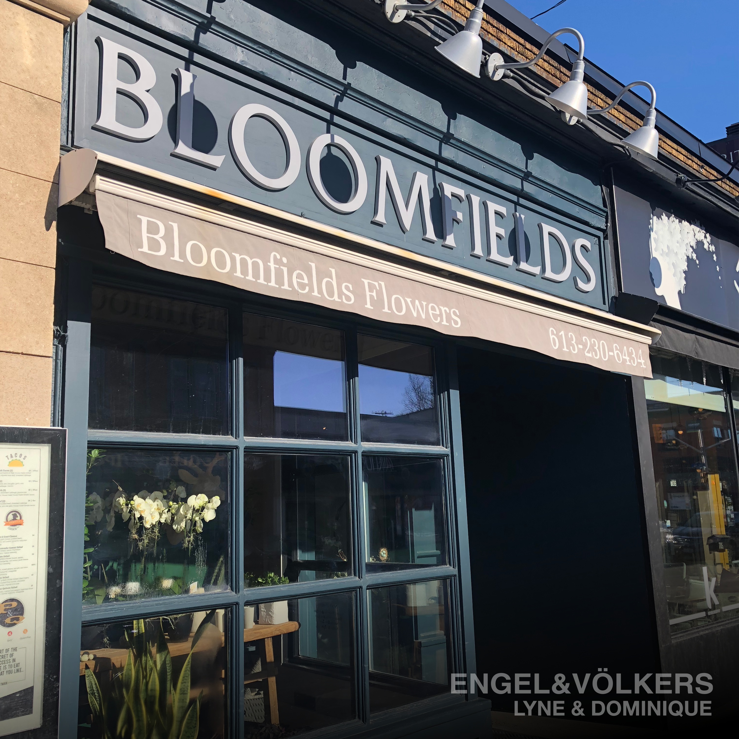 Lyne_And_Dominique_TheGlebe_Ottawa_bloomfields_15.png