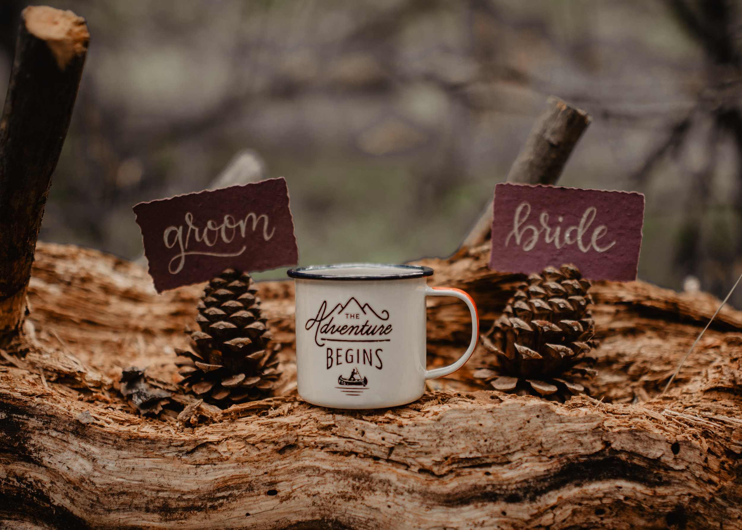 Cute bride and groom table labels on pine cones with local mug