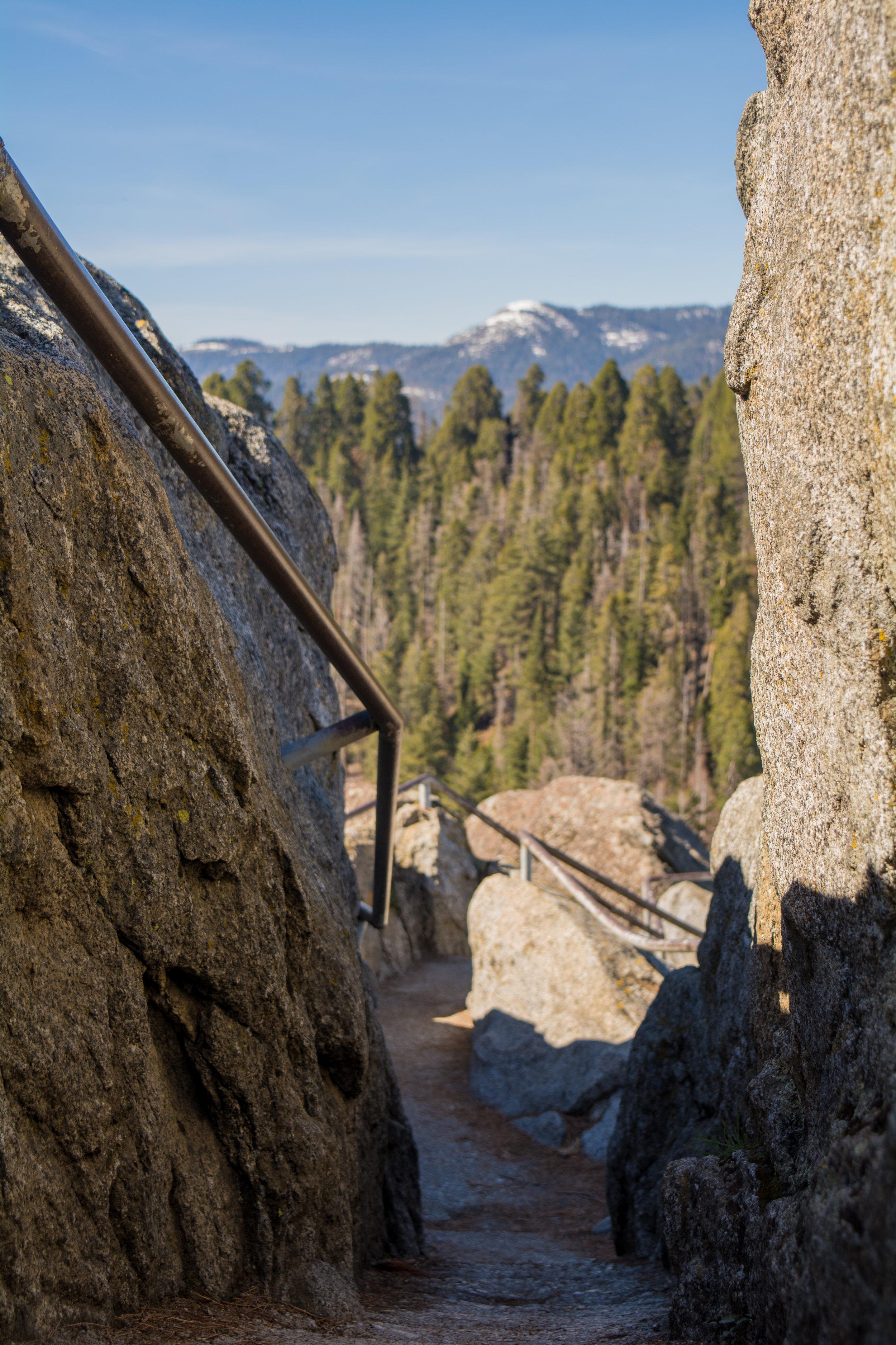 Sequoia NP Trail