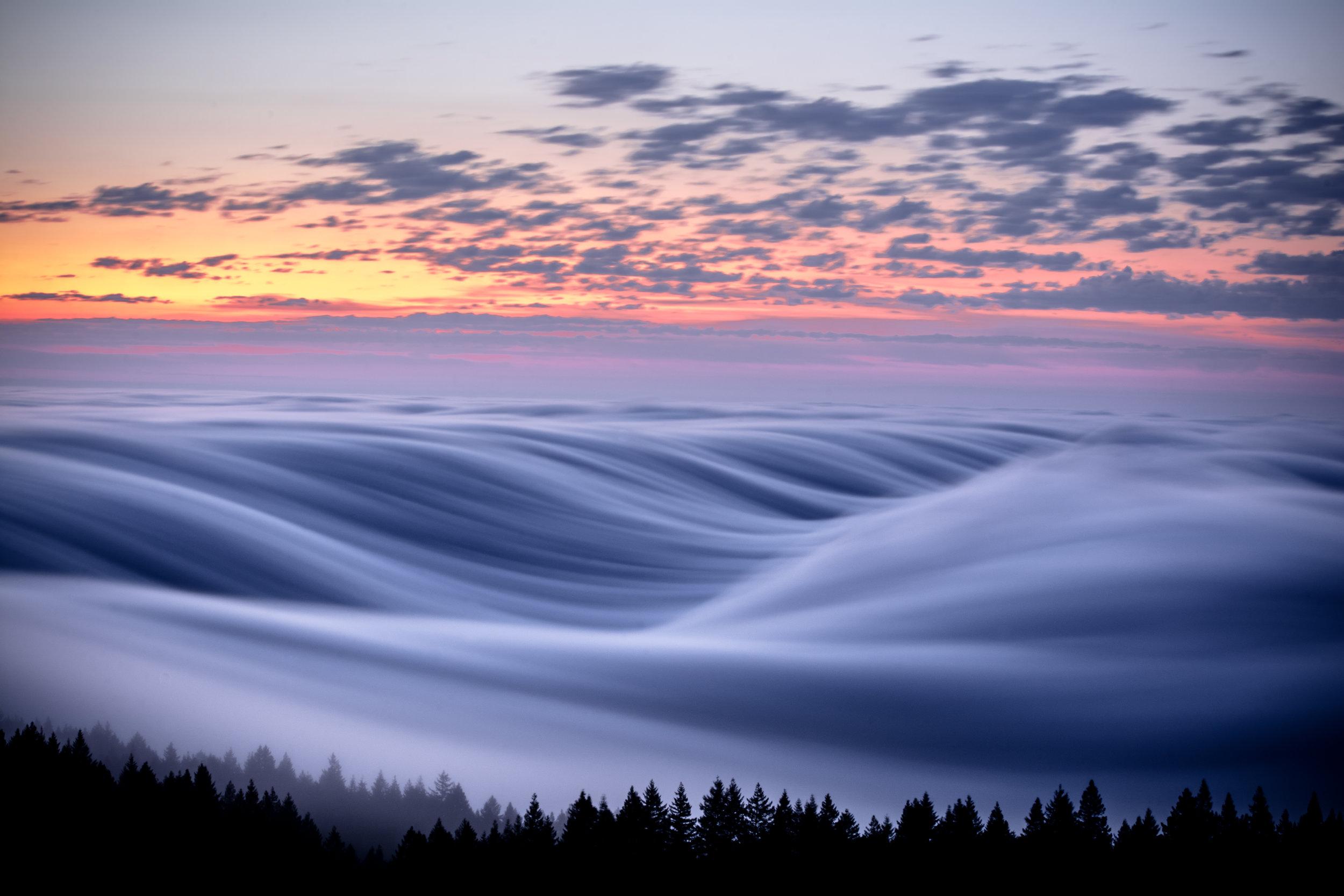 Mt Tamalpais Fog Flow