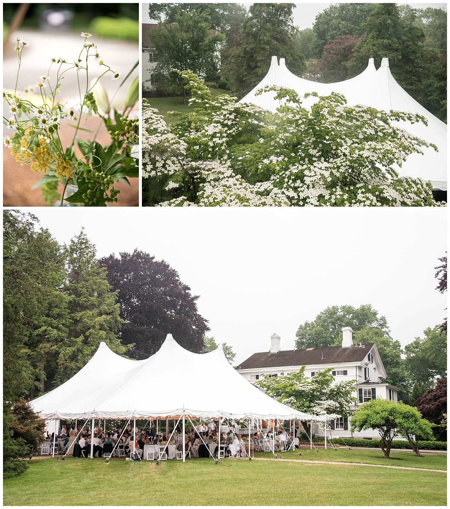 Homestead_Farm_Tent_Colonial_Connecticut_Wedding_Photographer_Burr_Mansion_Erny_Photo_CO_050Outdoor_Tent_Party_Reception_EventApollo_Photojournalism_Wedding_Writer_Heather_Erny013.jpg